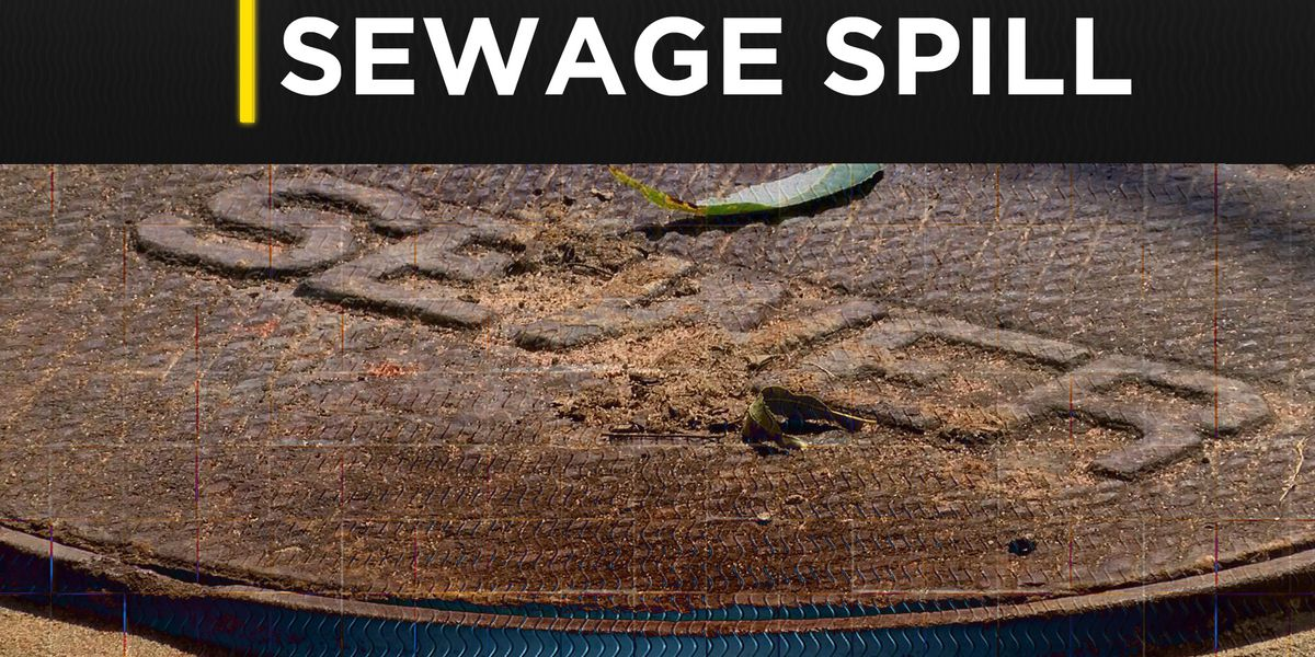 Sewage spill reported in Albany