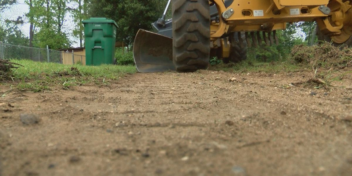 Operation Clean Sweep clears trash out of Albany's Ward 4