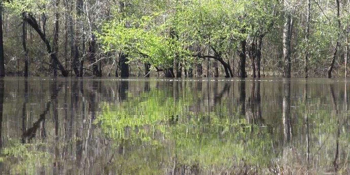 Task force looks to curb Valdosta sewage spills