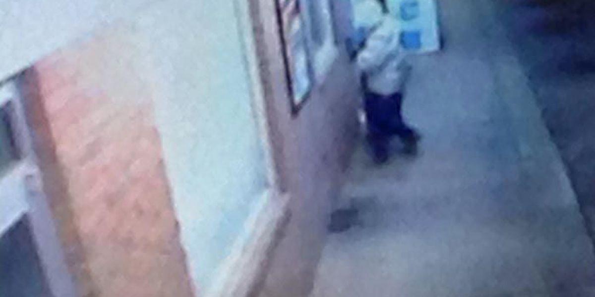 Lee Co. investigators search for burglar caught on camera