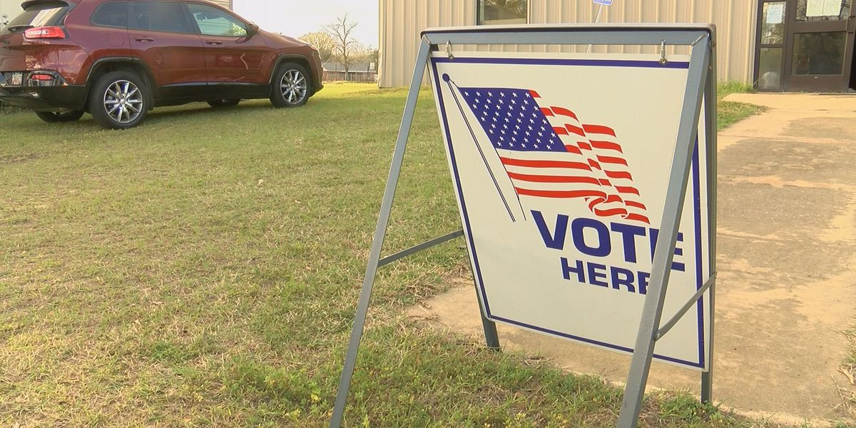 City of Arlington election results likely not changing