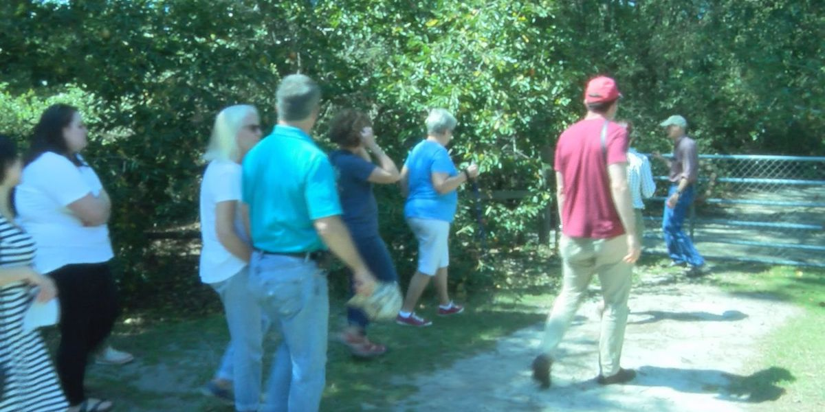 'Car to Farm' tour shows off Tift and Irwin County Farms