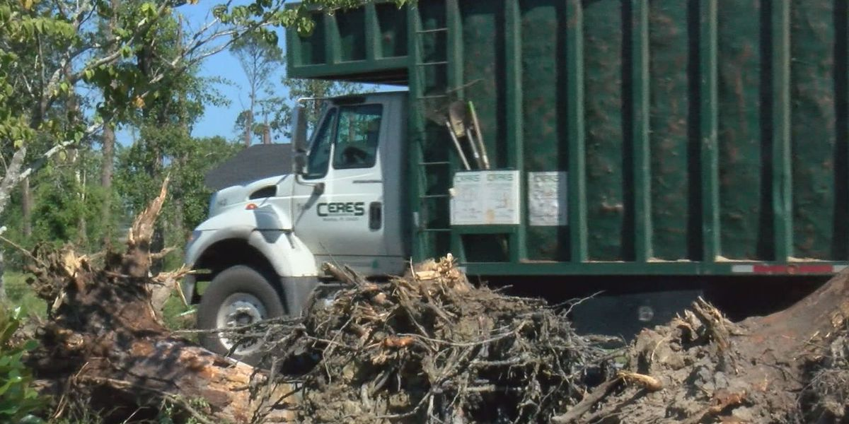 Company signs 5 year contract with Albany for storm clean-up
