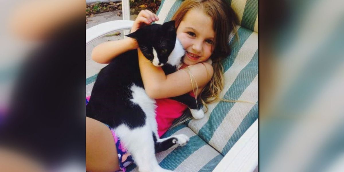 Terrell Co. crews help Florida girl search for lost cat, 'Jay-Z'