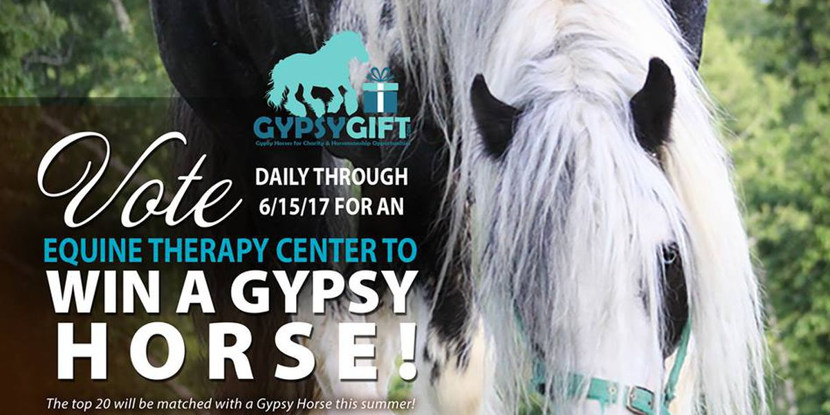 Thomasville therapeutic riding center enters contest to win horse