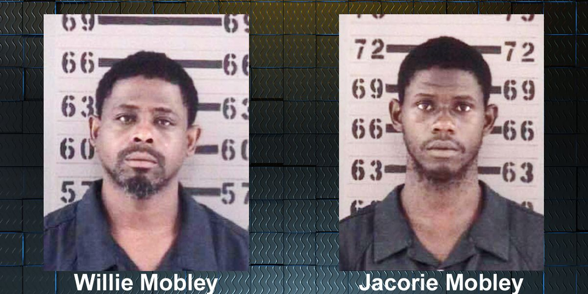 Father, son charged in Albany homicide