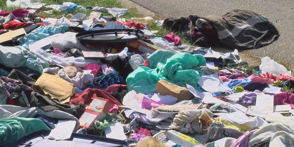 Another illegal dump site found in Albany