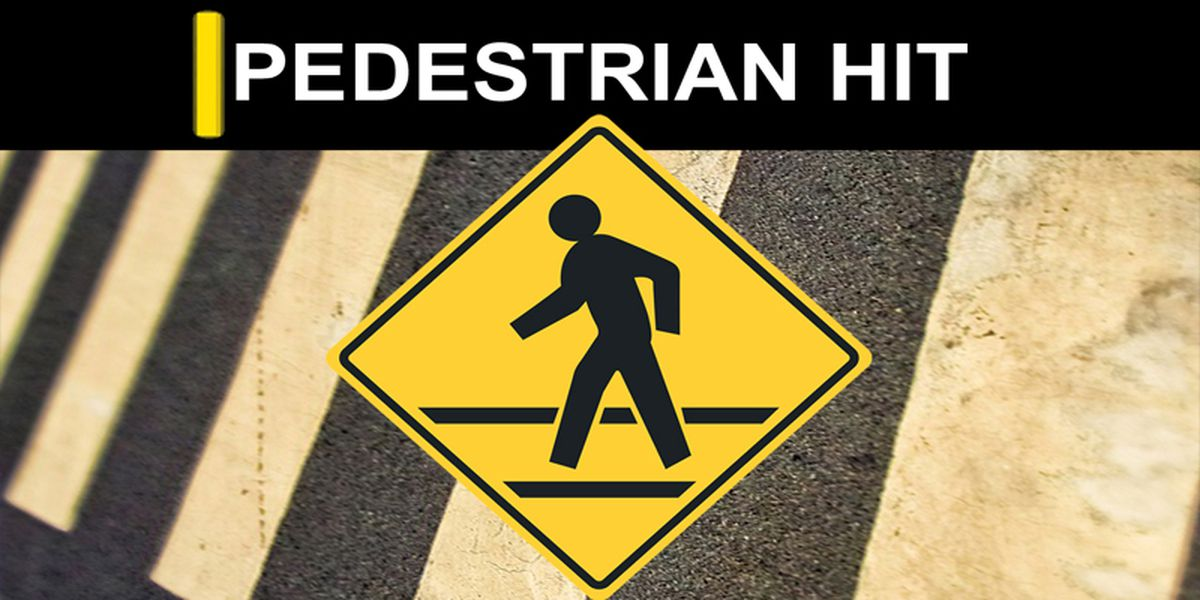 Pedestrian struck and killed on Bypass