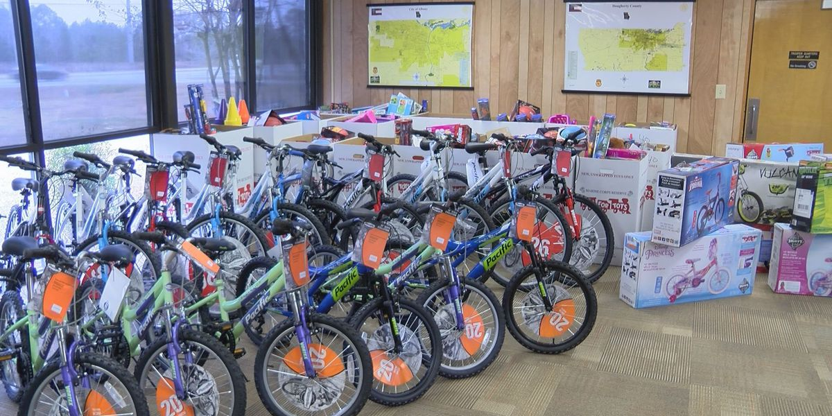 South GA GSP post collects more than 800 toys for Toys for Tots