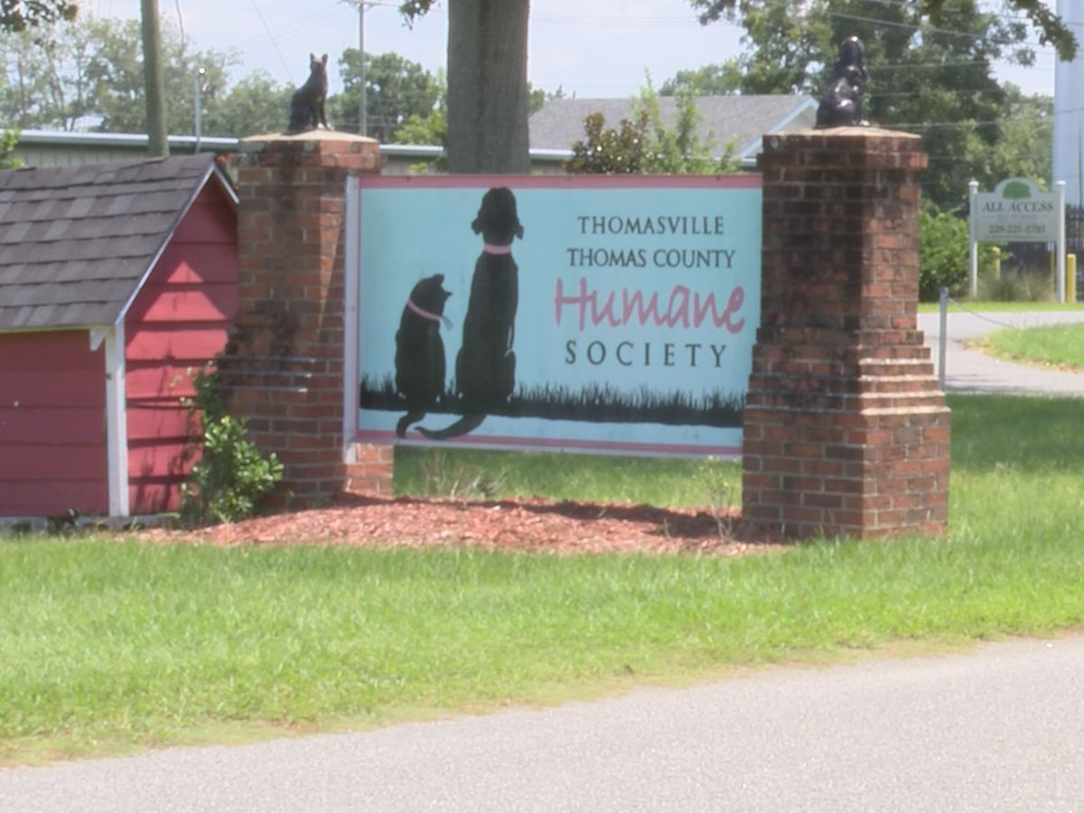 "Humane Society to host first ""Mutt Strut 5K Dog Walk"""