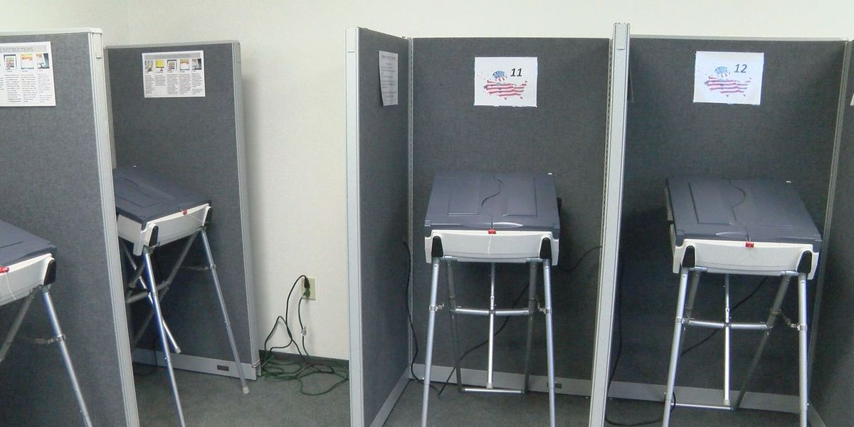 Elections chief: Voting machines are safe
