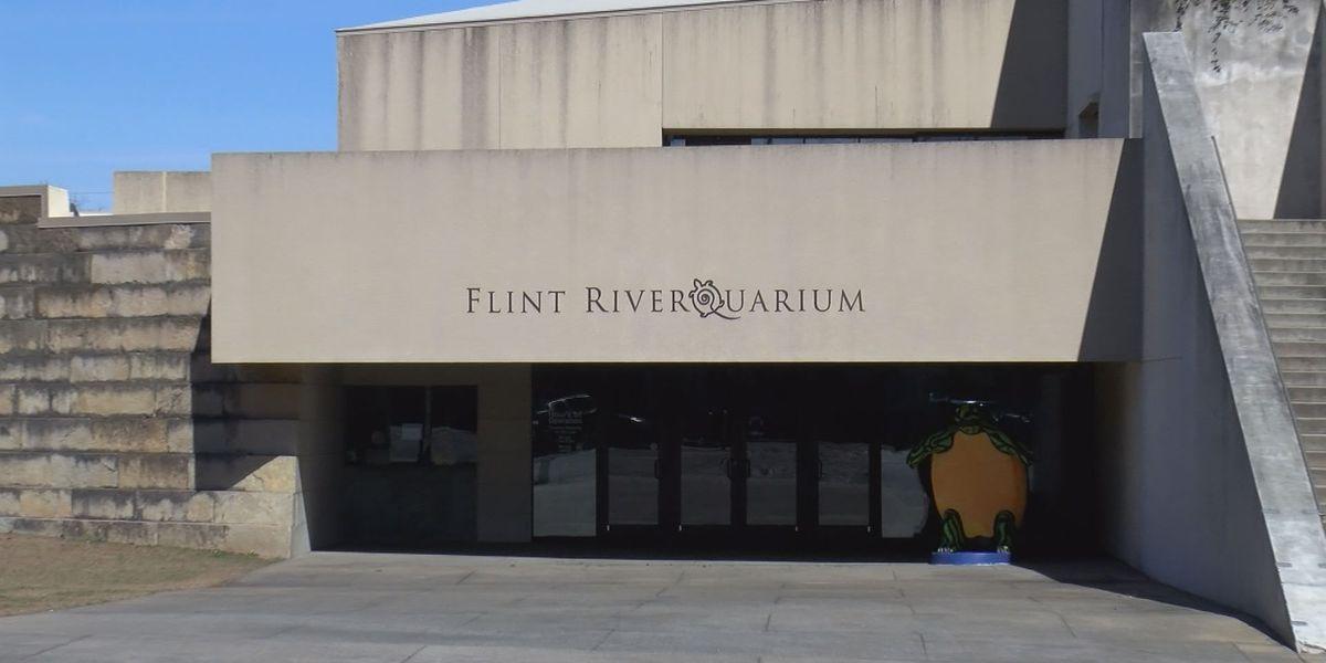 Easter education on eggs at Flint RiverQuarium