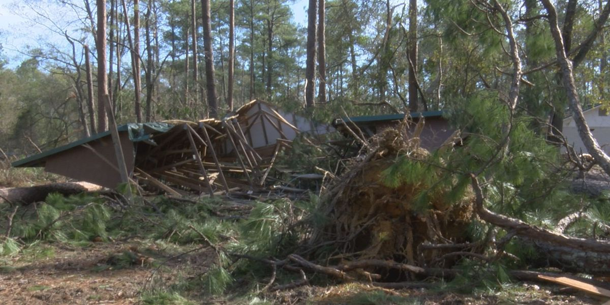 Boy scouts survive storm while camping