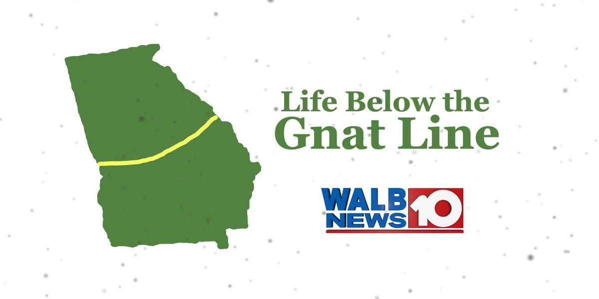 Living life below the 'Gnat Line'