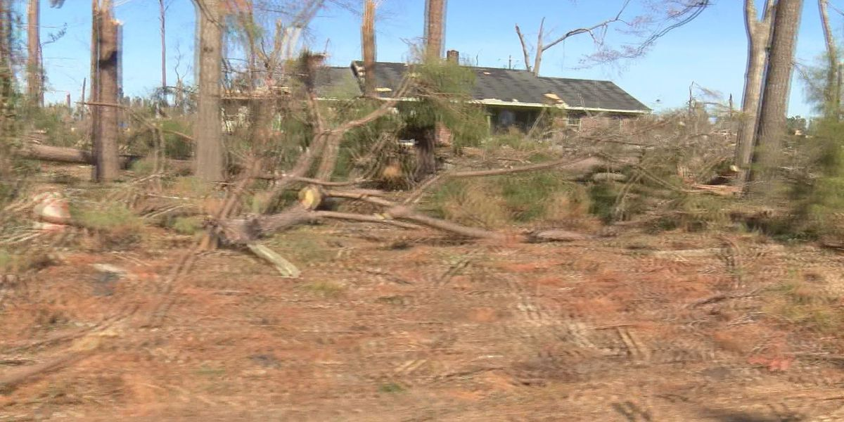 Dougherty County's storm debris removal deadline approaches