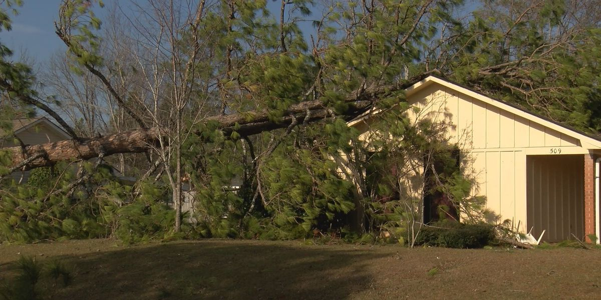 You have storm damage. Now what?
