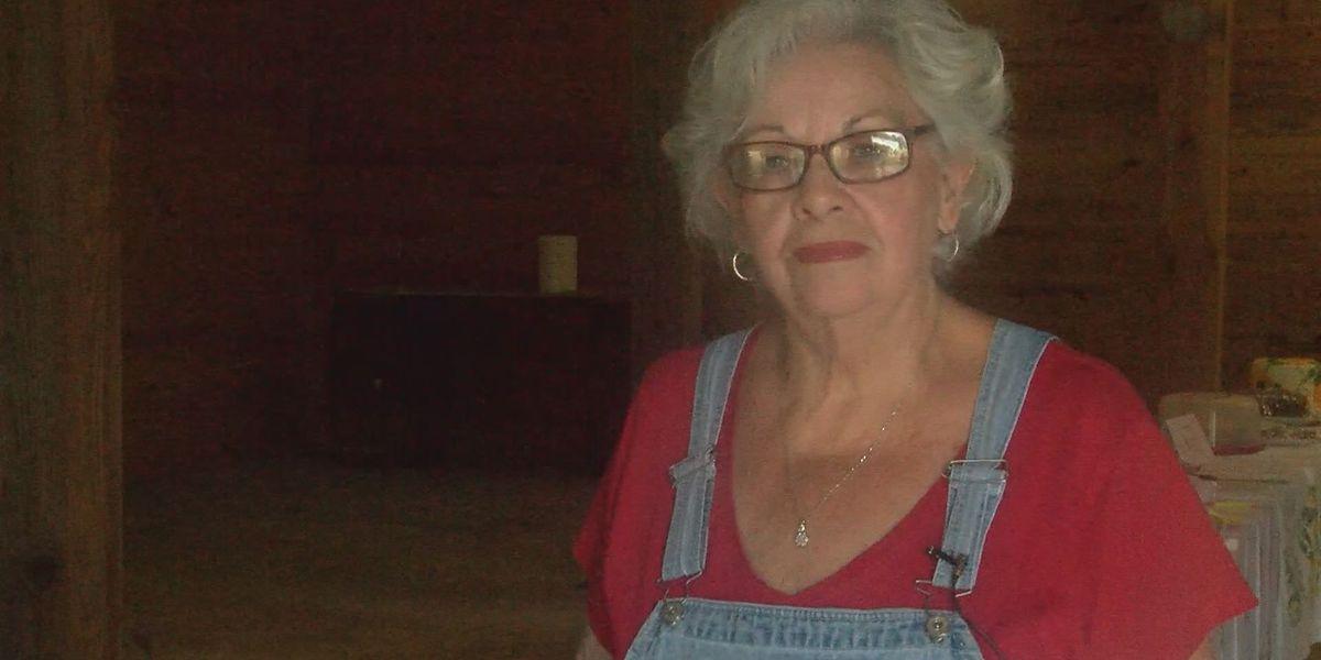 Wiregrass Farmer's Market hosts County Fair Day