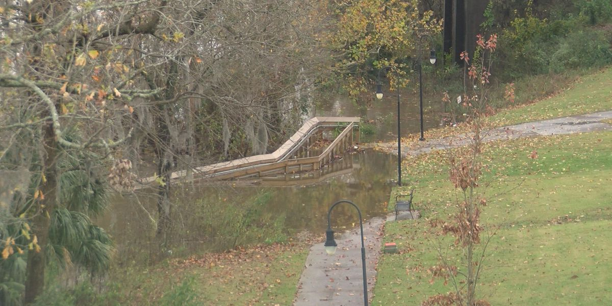 Flint River projected to top flood stage