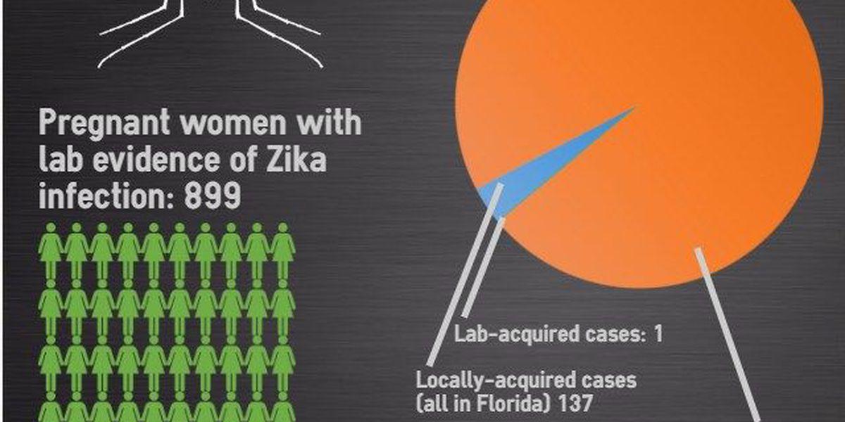 Zika battle outlined at Valdosta meeting