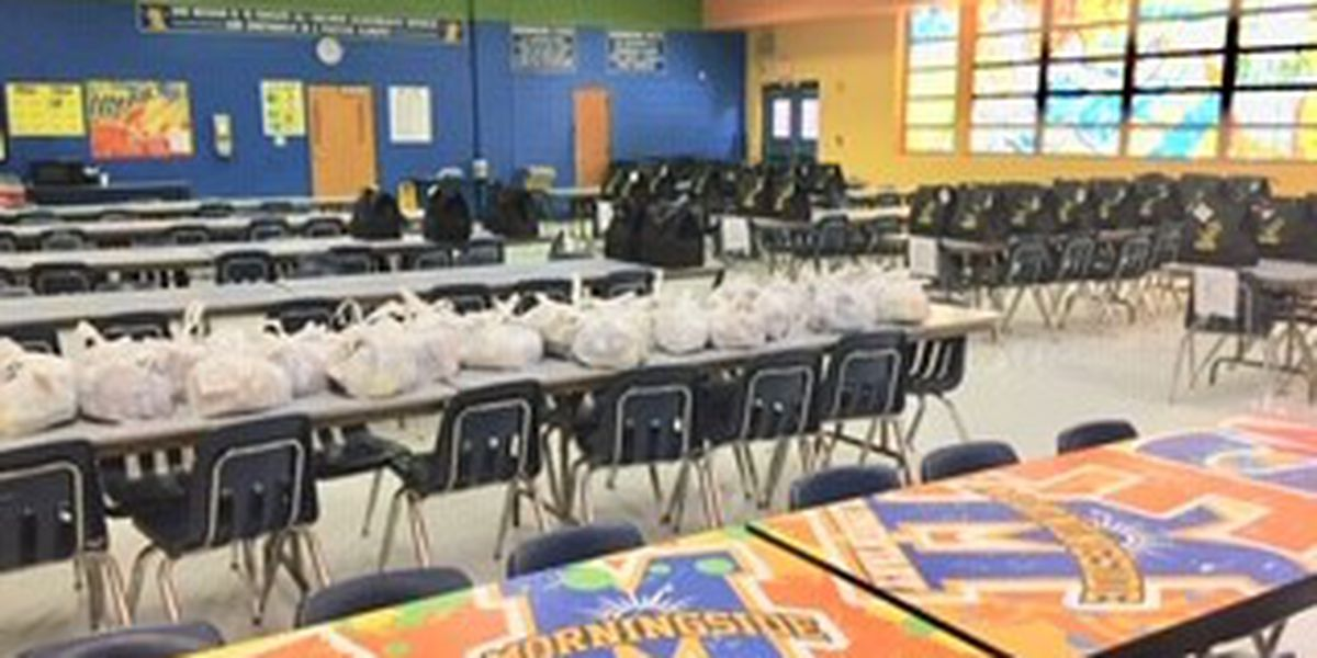 "Helping Hands Ending Hunger, Kids Helping Kids"" feeds DOCO students"
