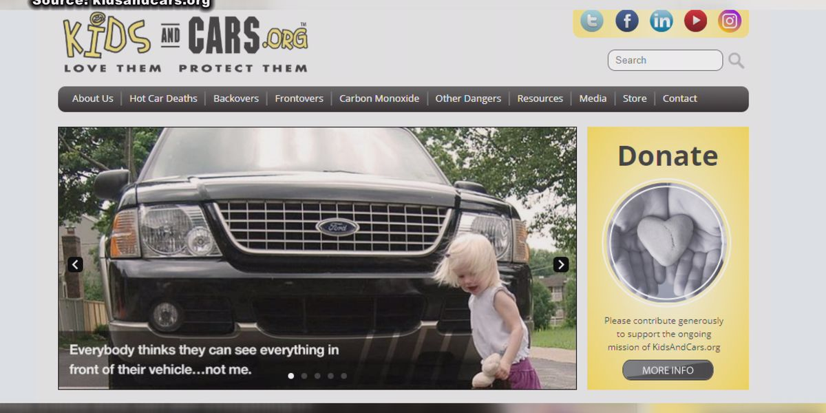Organization raises awareness to prevent car-related accidents
