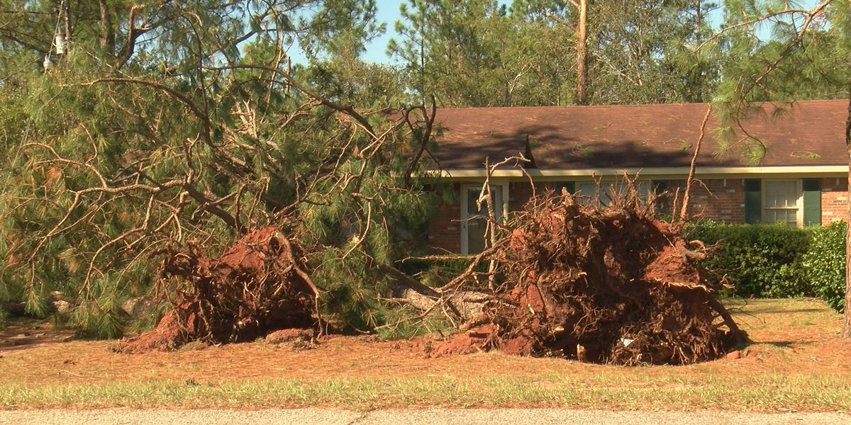 Terrell County suffers hard hit from Hurricane Michael