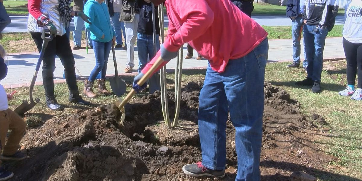 Volunteers plant over 100 trees to keep Albany and Dougherty Co. beautiful