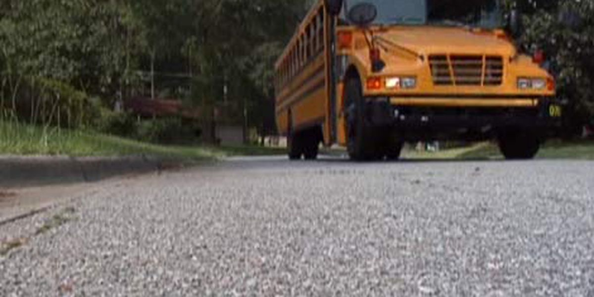 New school bus law goes into effect Monday in Ga