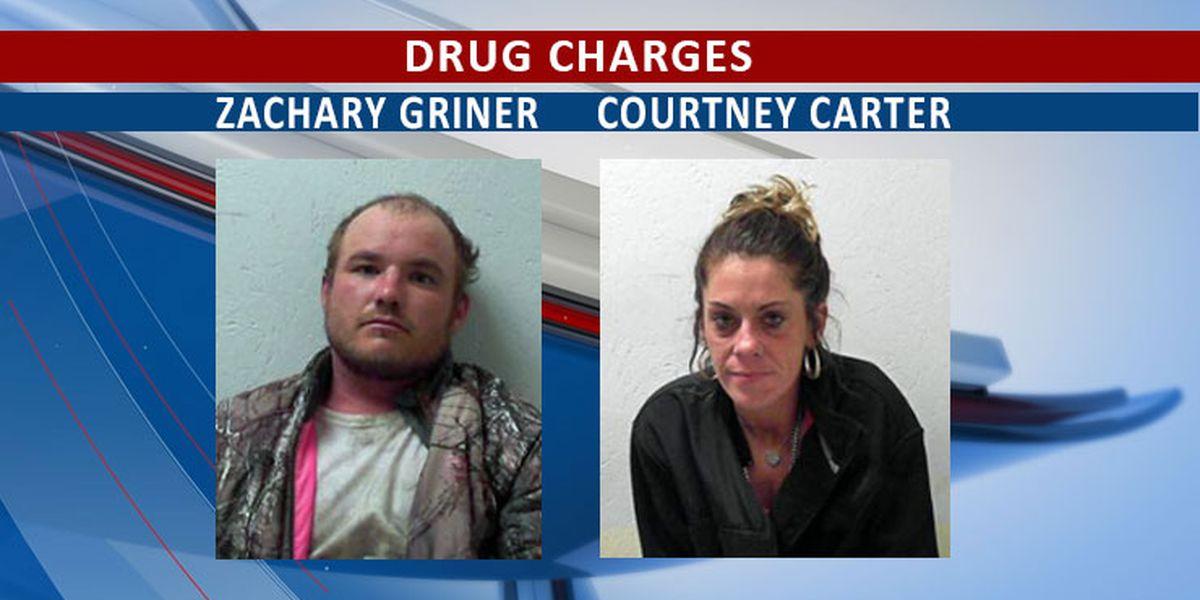 Cairo couple caught in Bainbridge with meth, BPS says