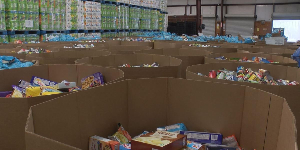 South Georgia Stamp Out Hunger food drive is biggest one yet