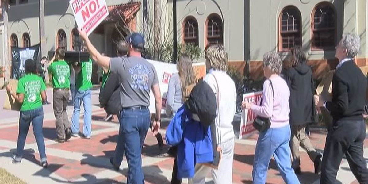 Lowndes environmental groups march through VSU