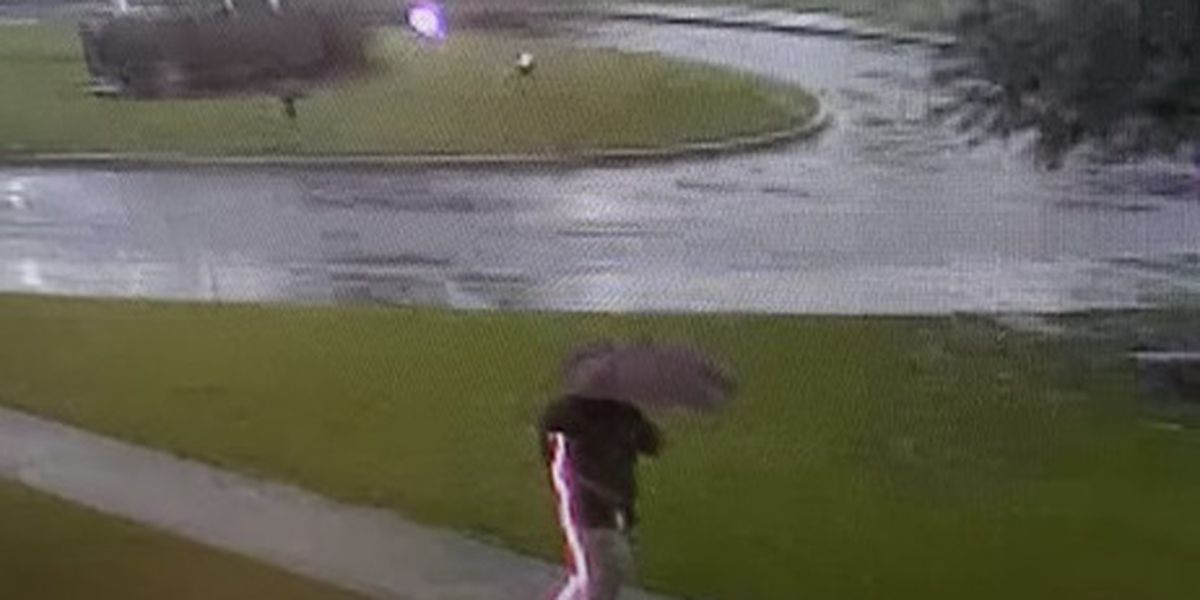 VIDEO: Lightning bolt strikes inches away from S.C. school guidance counselor