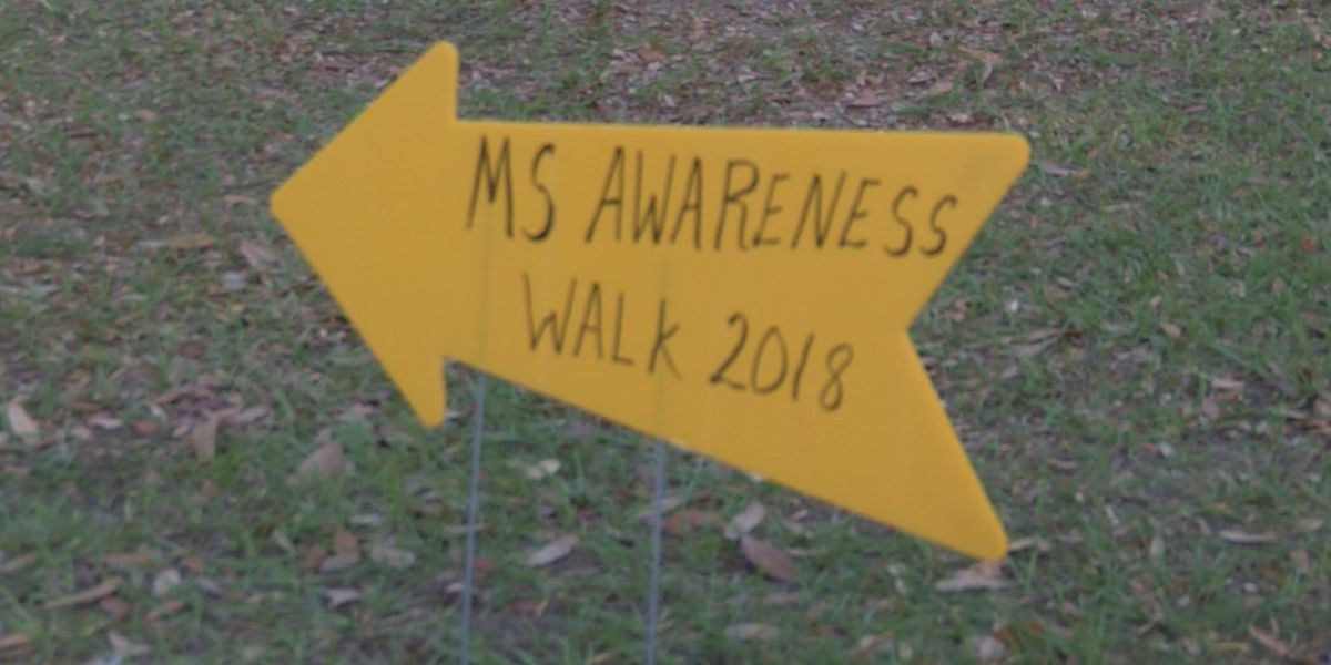 Multiple Sclerosis walk encourages engagement in downtown Albany