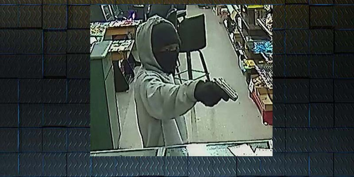 UPDATED with photos: Albany police hunt armed robbers