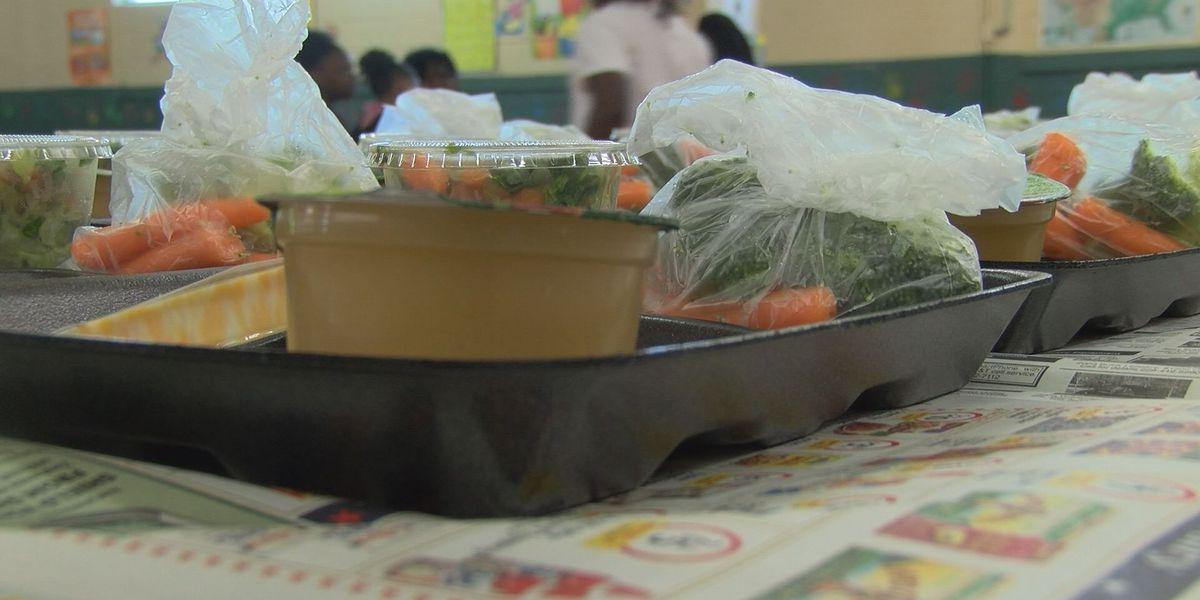 Dougherty County summer feeding program underway