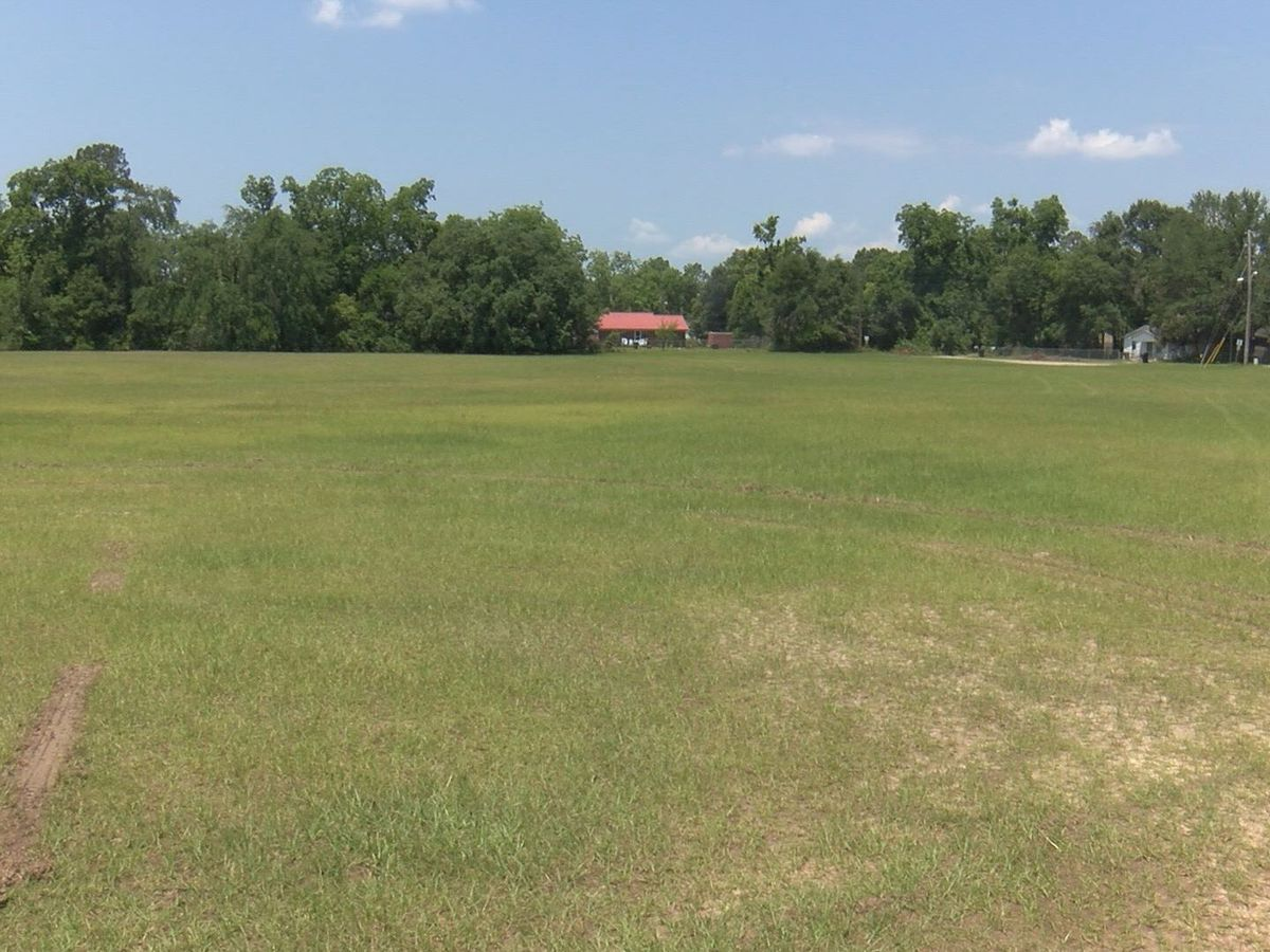 Land Bank acquires more vacant land in Albany