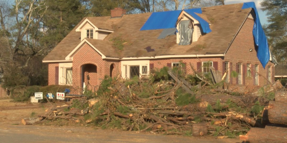 EMA Director: Debris removal is next big step in storm recovery