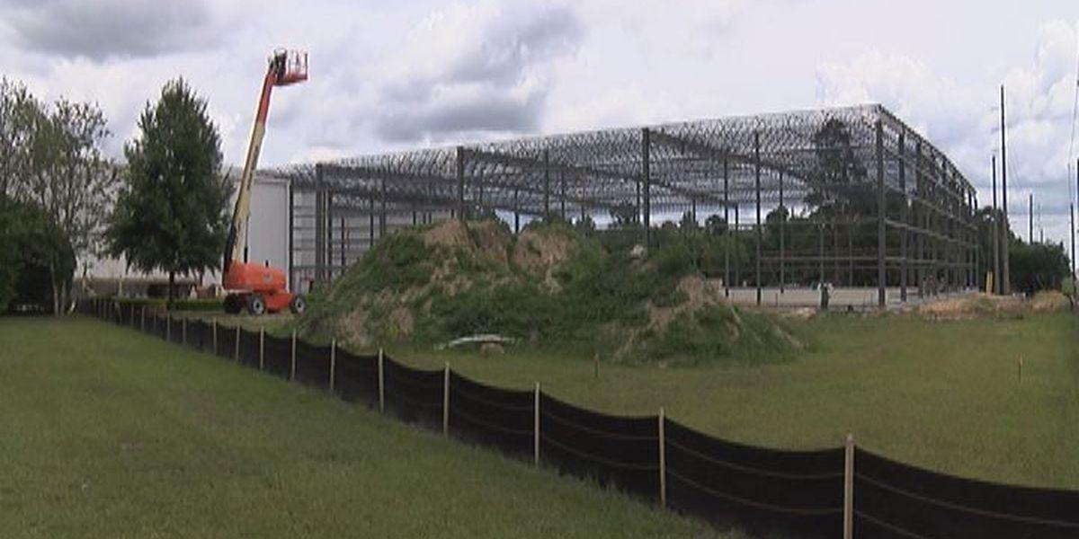 South Georgia Pecan expanding, adding more jobs