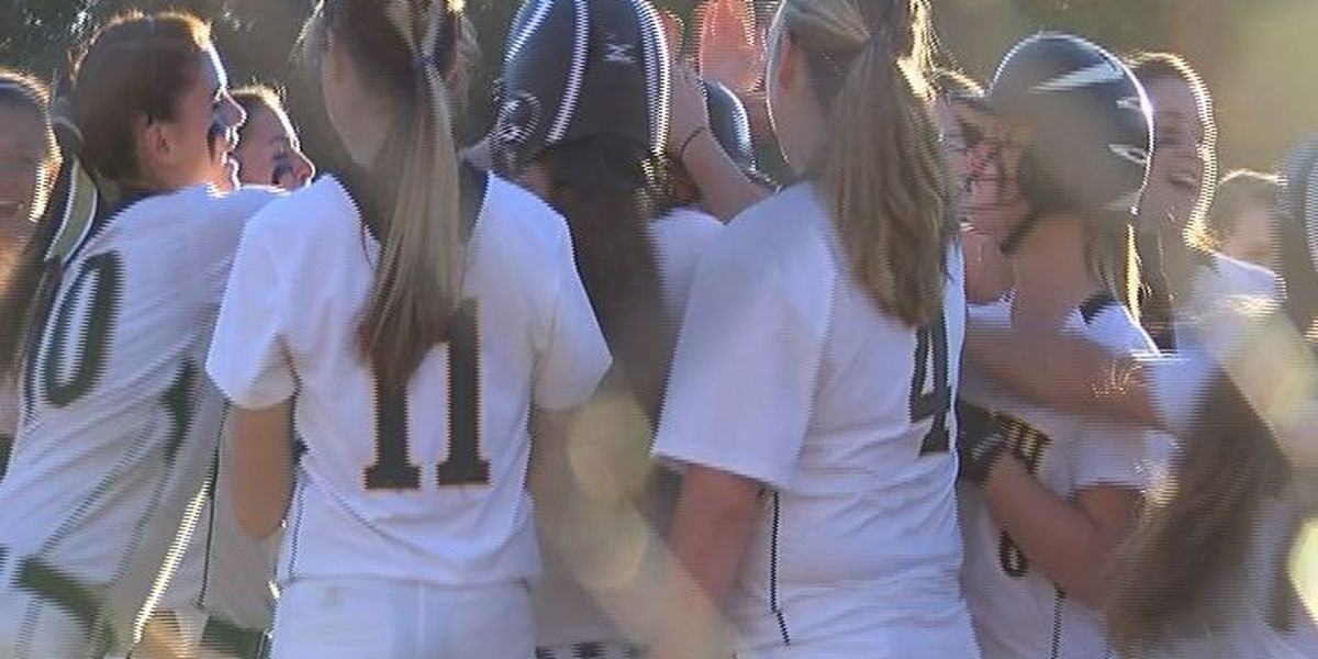 South Georgia softball region winners