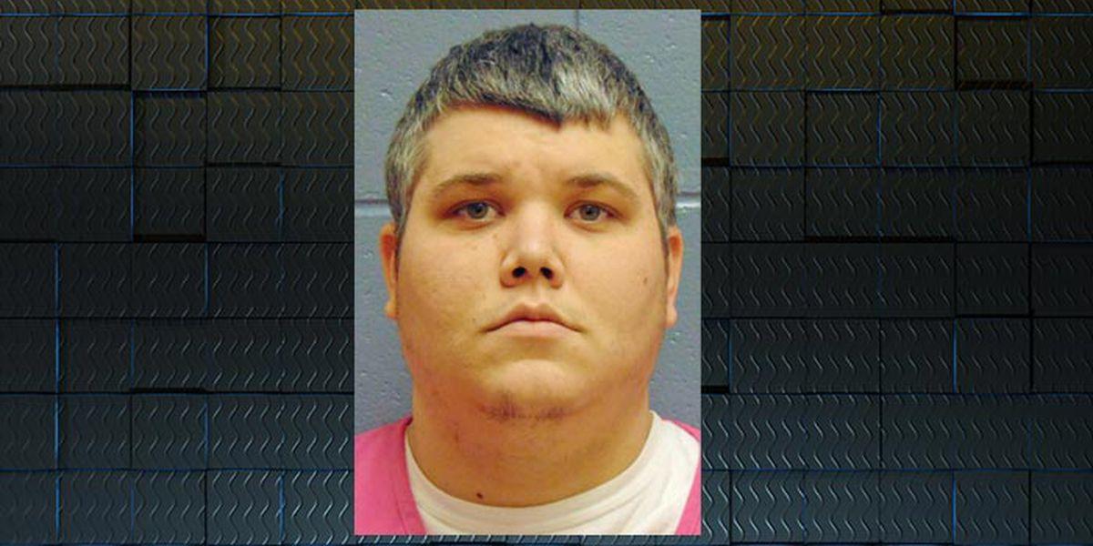 Lee man sentenced for molestation