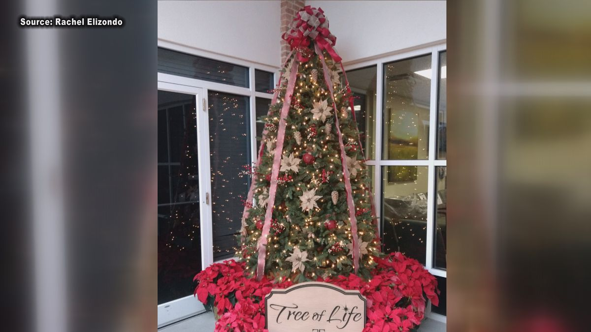Tree of Life ceremony in Tifton goes virtual