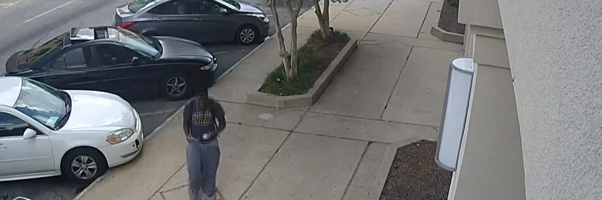 Albany police search for entering auto suspect