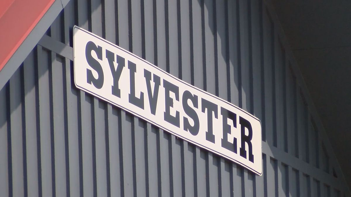 Sylvester hopes to fill city manager position in June