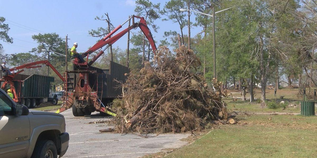 Contractor begins to remove Tift Park debris