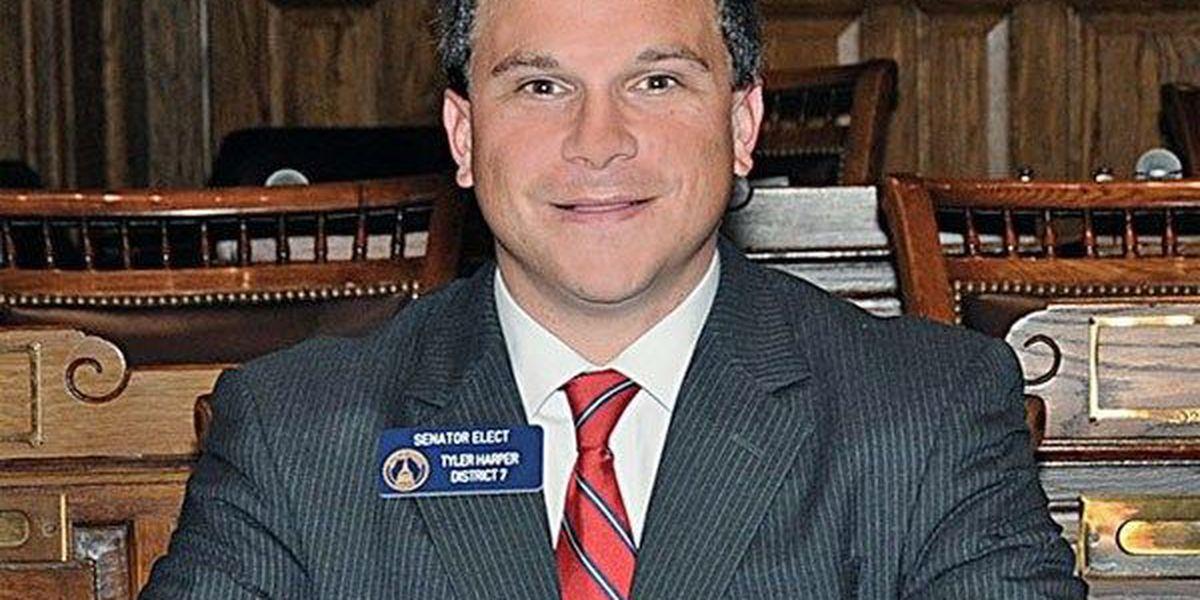 Irwin Co. senator gives budget update