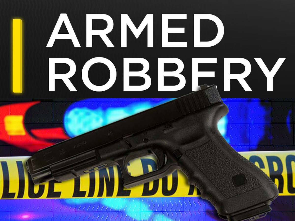 Albany police searching for armed robbery suspects