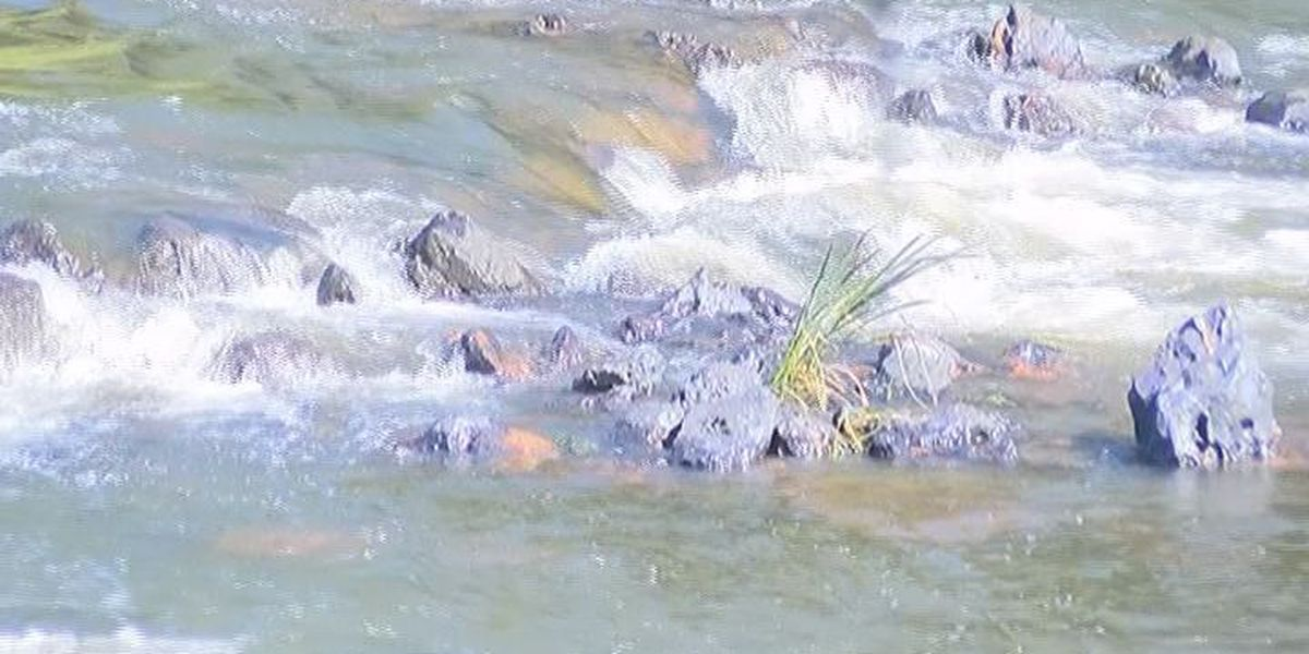Volunteers needed for Rivers Alive cleanup