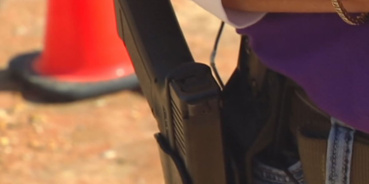 Ministers speak out against campus carry bill