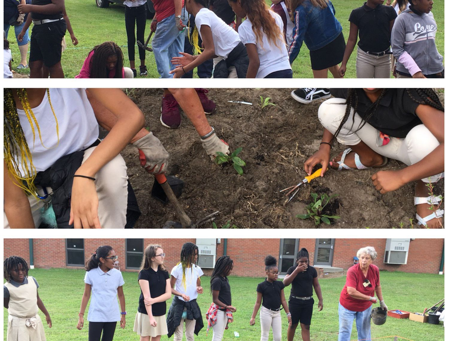 Valdosta elementary school starts their own garden