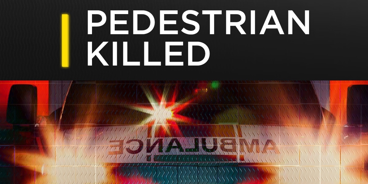 Crisp Co. man killed after getting hit by train